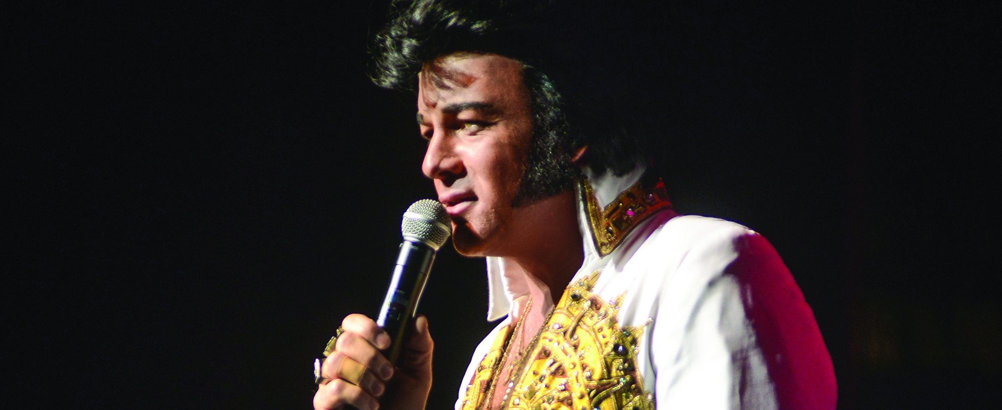 David Lee: The Ultimate Elvis
